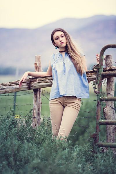 Fence-03.jpg