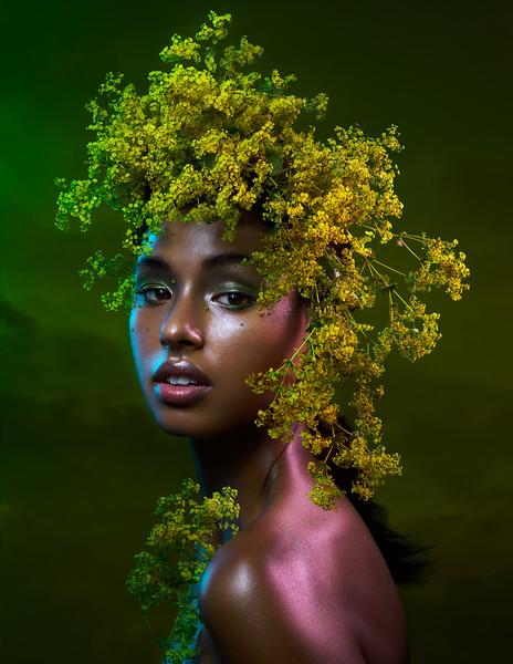Floral Storm