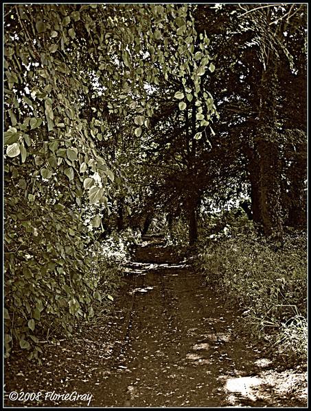 Journey or Destination?  ©2008 FlorieGray, Wroxton