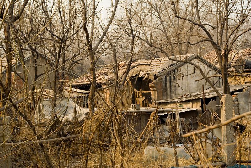 063 Ruins.jpg