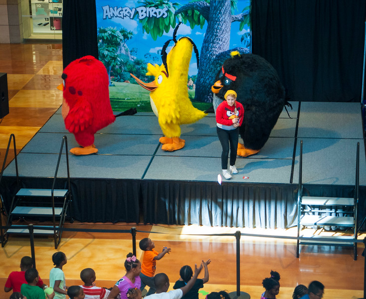 Angry Birds StoneCrest Mall 189.jpg