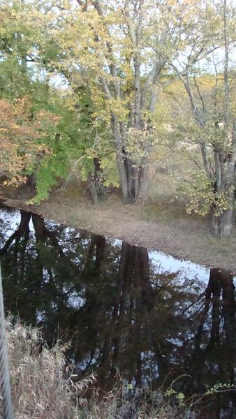 App.Trail Fall 2008,Fl. Maine 232.JPG