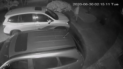 Driveway Thieves June 30 2020