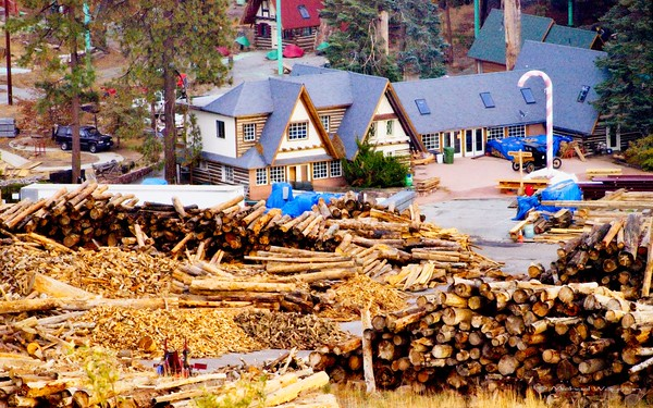 some logging and some ghosted buildings