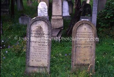 ROMANIA, Cluj Napoca. Old Jewish Cemetery. (2004)