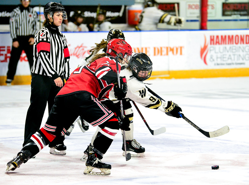 EHB_Kitchener_Cyclones-2.jpg
