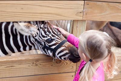 Detroit Zoo & Boulder Ridge