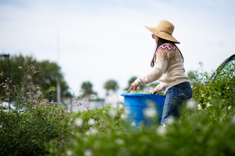 Sofia Gonzalez works on the Early Childhood and Development Center's community garden.