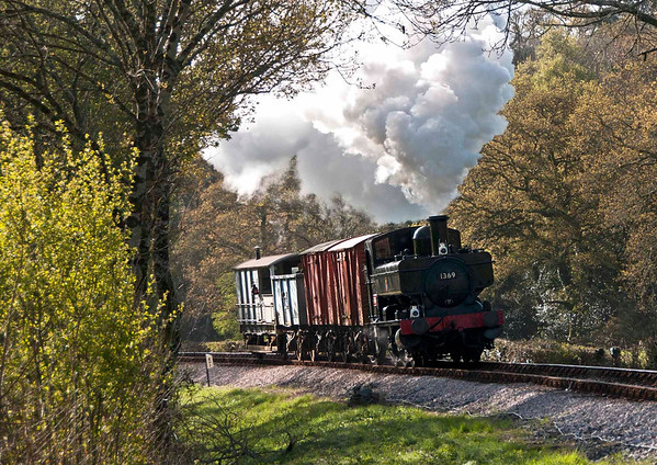 GWR Pannier Tank 1369 on Local Freight