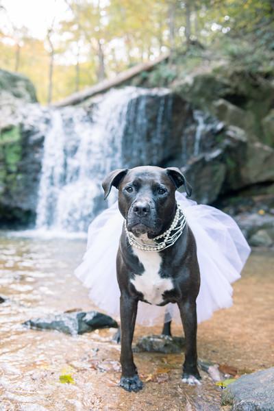 Schiavetto_WeddingPhotographer-145.jpg