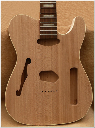 Telecaster Thinline, &  Archtop Projects