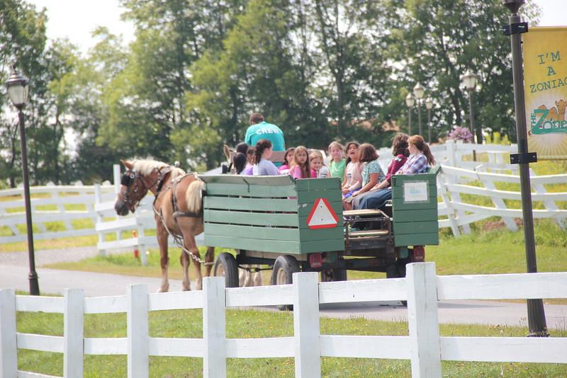 kars4kids_thezone_camp_girlsDivsion_activities_Horse&Buggy (9).JPG
