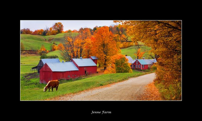 jenne-farm.jpg