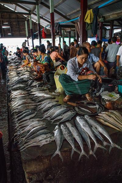 Myanmar_0618_PSokol-2656.jpg