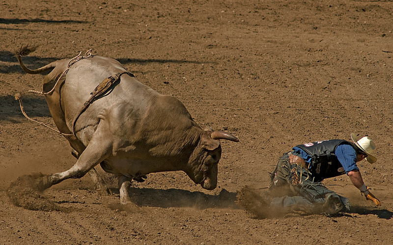 COOMBS RODEO-2009-3759A.jpg