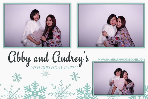 Abby and Audrey's 18th Birthday Party