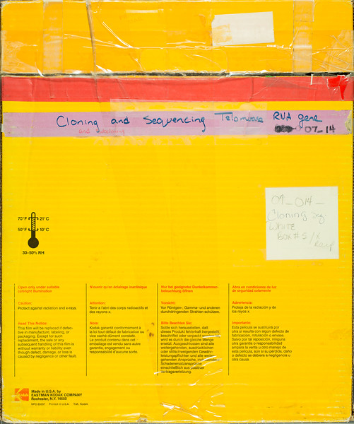 CWG-07-014 Diagnostic Film