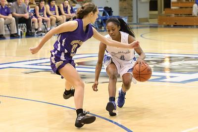 DHS Girls Basketball 01-14-2014
