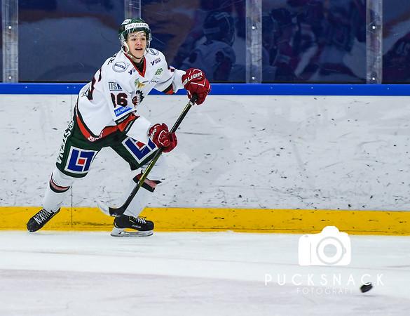 J20SM Åttondelsfinal #1 2019-03-20: IF Malmö Redhawks - Frölunda HC