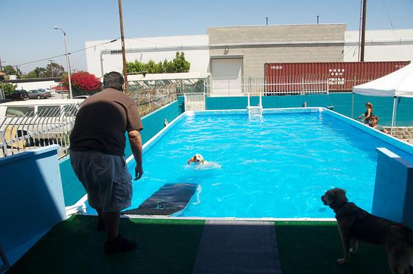 Pool - 7 Aug 2010