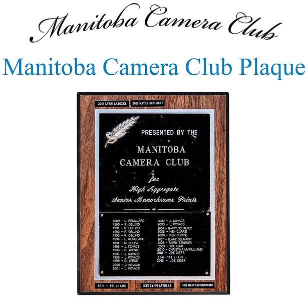 Manitoba Camera Club Plaque - Sr Mono Aggregate 4.jpg