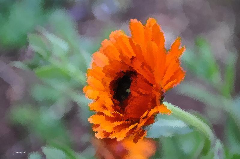 dream gardens 30 2-5-2011.jpg