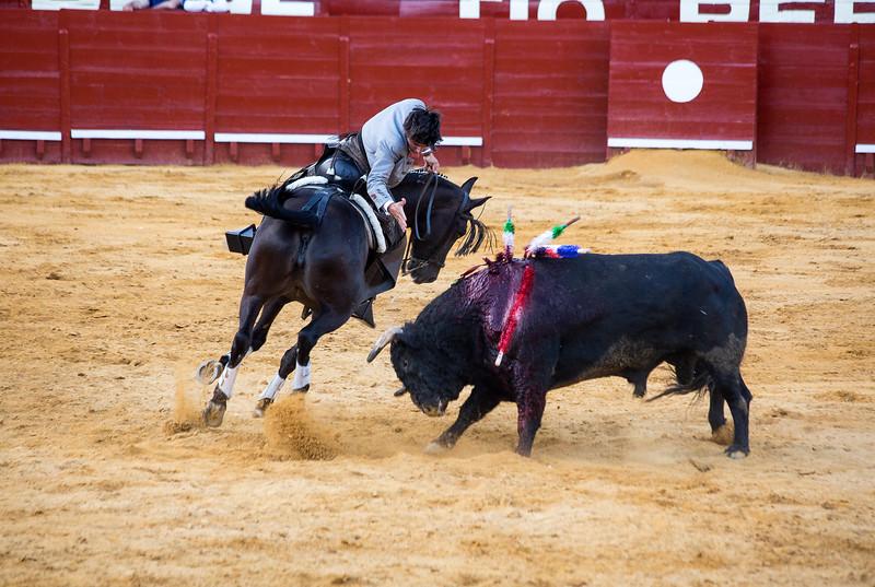 Bullfighting H26.jpg