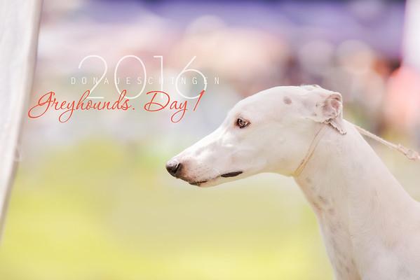 Donaueschingen Greyhounds Day 13/08/2016