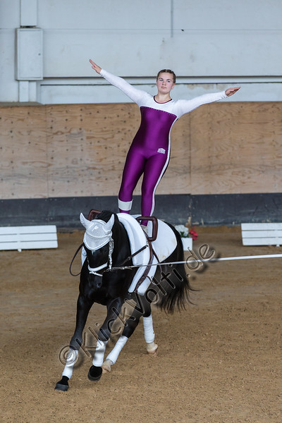 Pferd_Inter_2019_0104_klickvolti.jpg