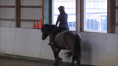 TSRC 2019-03-22 Wildfire Farm Video