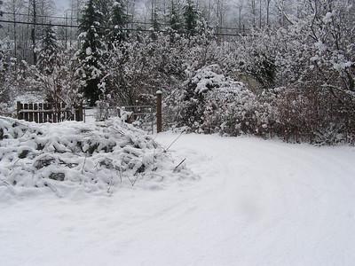 Janurary 28th, 2008 - Gold Bar snow event