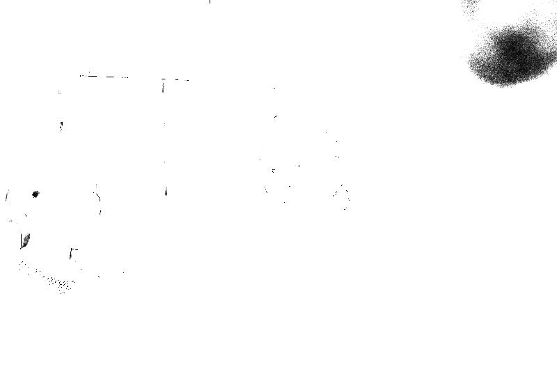 DSC09010.png