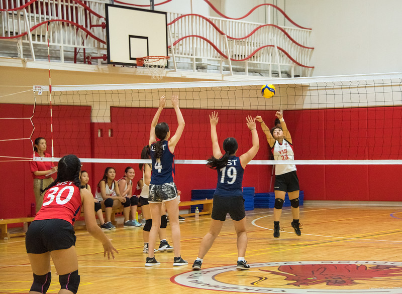 MS Girls Volleyball-October 2019-YIS_6061-2018-19.jpg