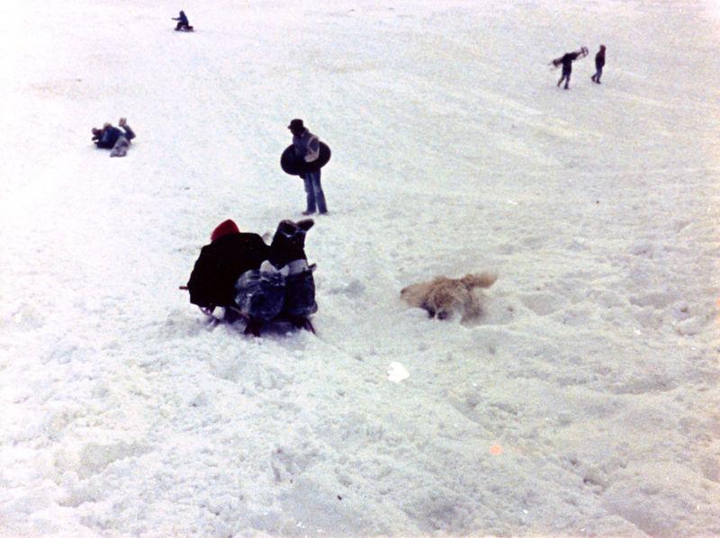 1987 12 05 - Sledding at Timberline Park 007.jpg