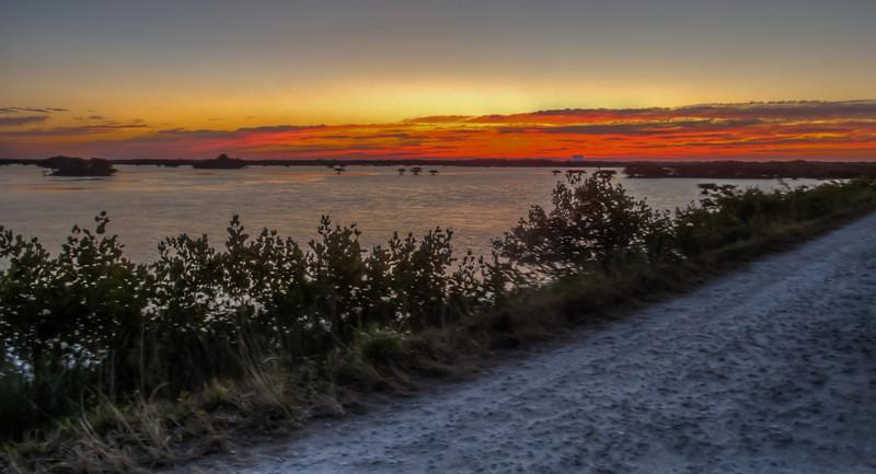 Merritt Island National Wildlife Refuge - Jan 23, 2014