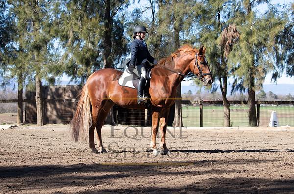 Rider 255