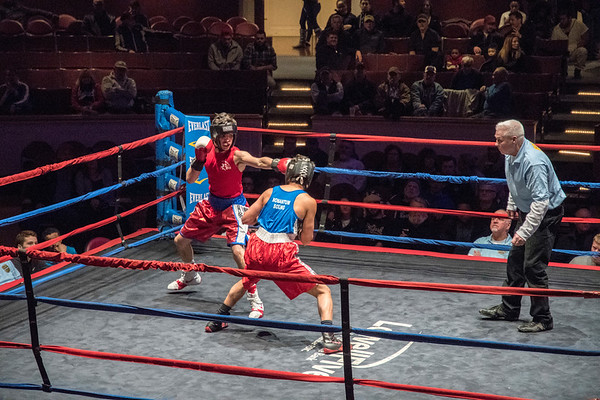 Golden Gloves 2-Feb-2017