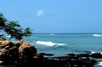 Oahu-Waimanalo Gulch Landfill - Beach - Tuesday
