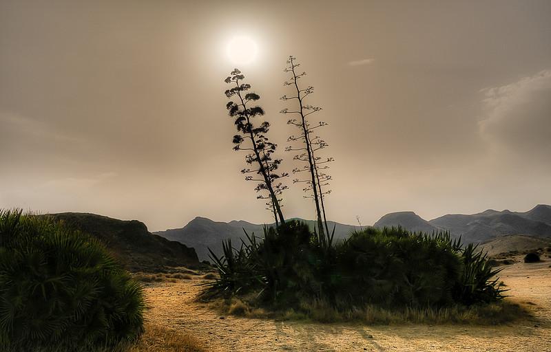 Sun setting in the nature reserve of Cabo de Gata,   Almeria, Spain, 2012