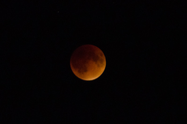 Blood Harvest Moon