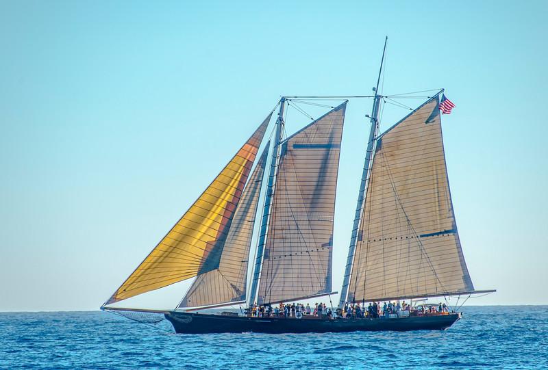 Tall Ships_America-1.jpg