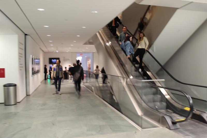 MOMA 2_2018  (29).JPG