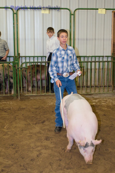 2010-09-29 Hogs 1000-1100