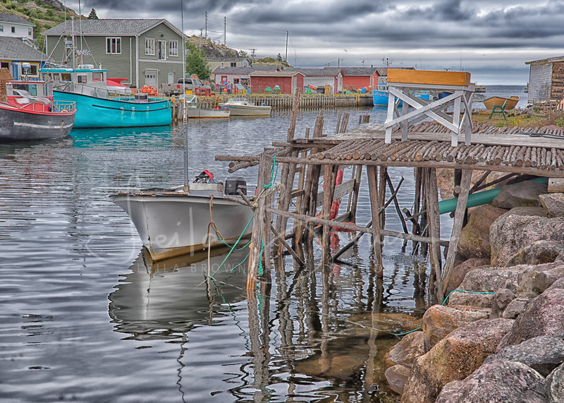 Late afternoon, Petty Harbour, Newfoundland