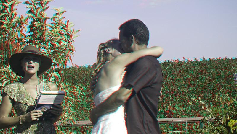Erica's Wedding - 3D
