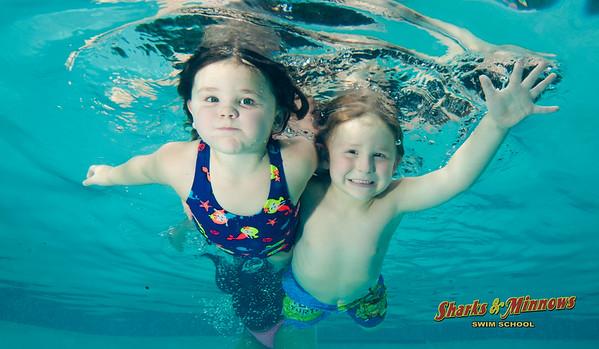 9-2015 Shark Pool