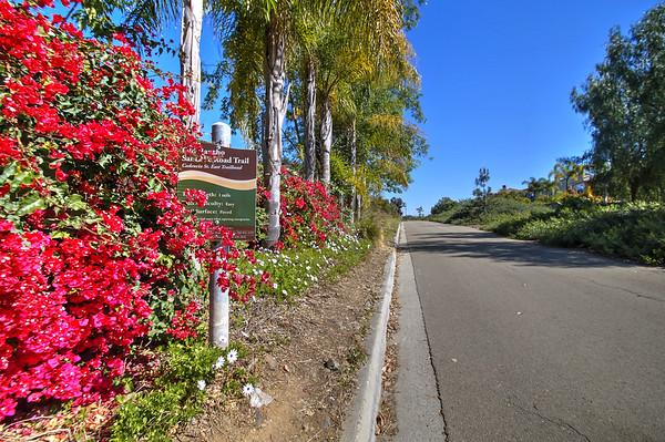 La Costa Oaks