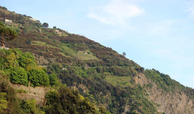 Italy-Cinque-Terre-Riomaggiore-40.JPG