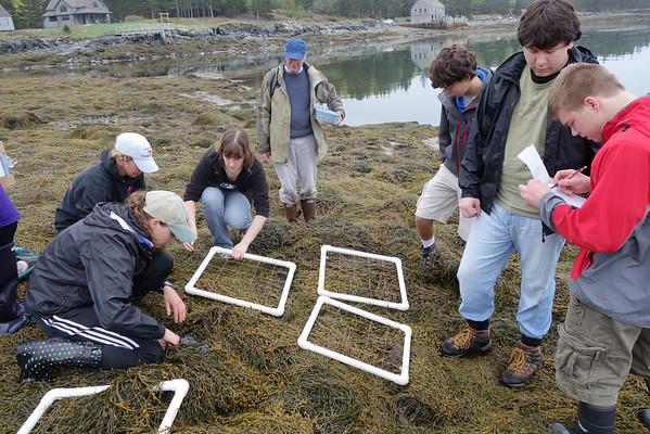 2014 Swan's Island Field Research