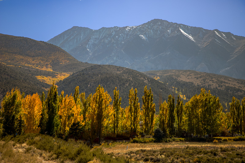 October 5 - Fall has arrived in Mammoth Lakes, CA.jpg